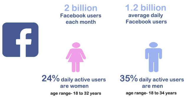 facebook demographic report 2017