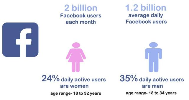 facebook demographic report 2017